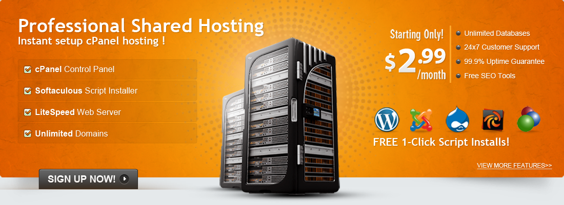 Perfect Money Hosting & Domain Registration | credit card