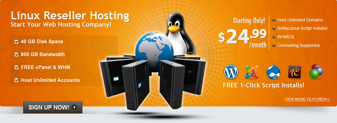 Start Your Web Hosting Company With a Linux Reseller Hosting !